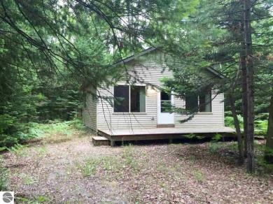 15631 Werner Trail, Hillman, MI 49746