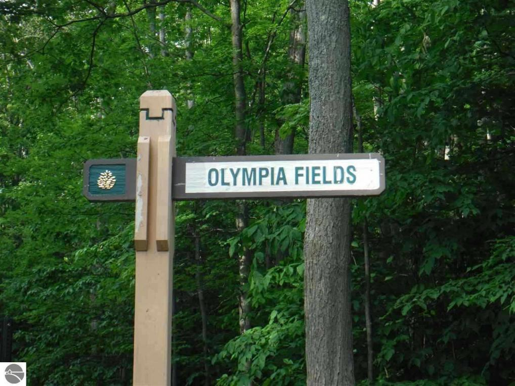 Lot 154 Olympia Fields, Bellaire, MI 49615