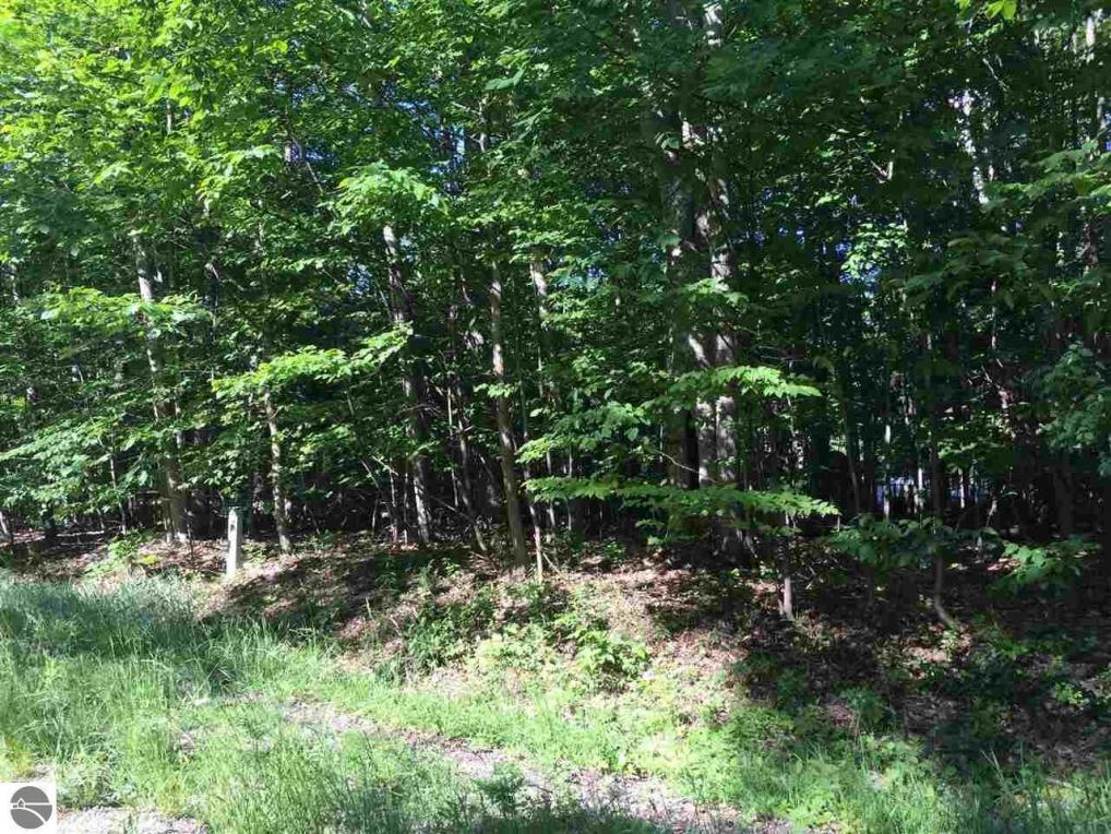 Lot 54 Cherokee Trail, Kewadin, MI 49648