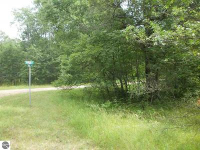 Photo of Basel Drive, Reed City, MI 49677