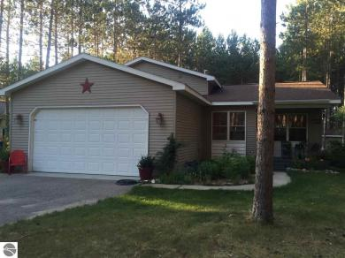 19980 W Pine Woods Drive, Lake Ann, MI 49650