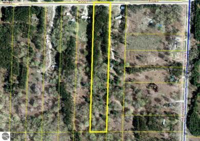 14875 Woods Trail, Thompsonville, MI 49683