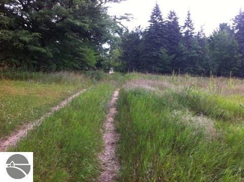 Forest Court, Bellaire, MI 49615