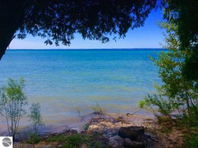 00 Michigan Trail, Kewadin, MI 49648