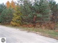 000 Farm Lane, Sw, South Boardman, MI 49680