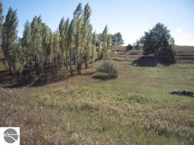 10 Acres Indian Hill, Honor, MI 49640