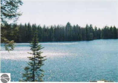 00 NE Lake Five Lane, Kalkaska, MI 49646