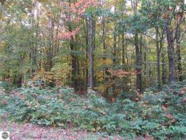 5745 Forestview Circle, Gaylord, MI 49735