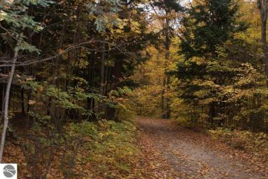 Parcel E Langs Lane, Interlochen, MI 49643