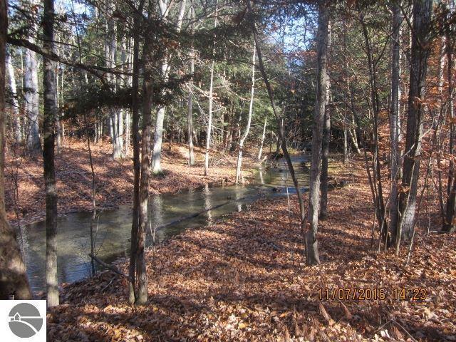 6 Forest Trail, Bellaire, MI 49615