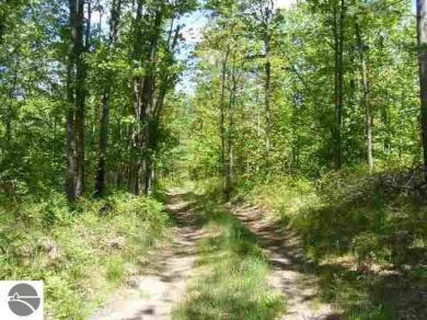 Trail Road, Cadillac, MI 49601