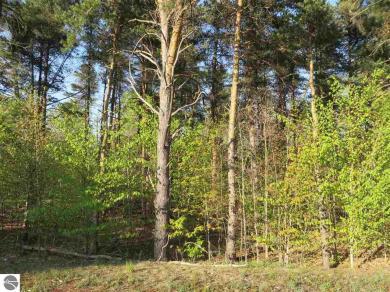92 Betsie Creek Drive, Interlochen, MI 49643