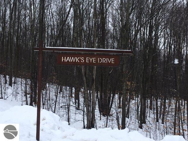 Hawks Eye Drive, Bellaire, MI 49615