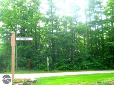 44 Bay Hill, Bellaire, MI 49615