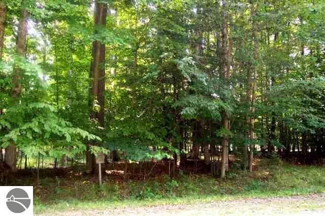 Lot 47 Cherokee Trail, Kewadin, MI 49648