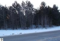 000 Co Road 571, Kalkaska, MI 49646