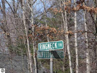 Ringneck, Alger, MI 48610