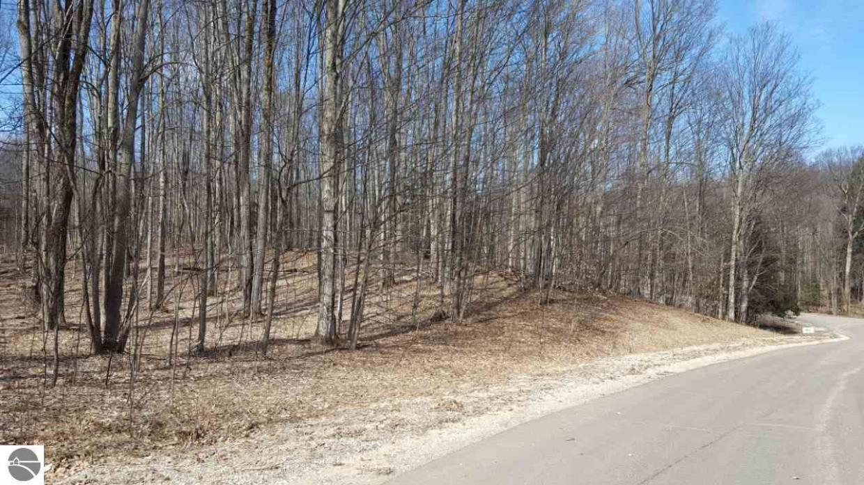 Lot 9 Staceywood Circle, Bellaire, MI 49615