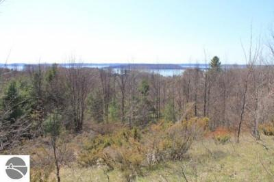 Photo of Nelson Road, Traverse City, MI 49686