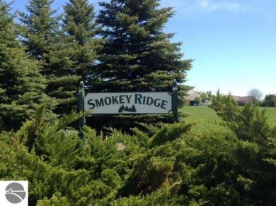 3973 Smokey Ridge Road, Traverse City, MI 49686