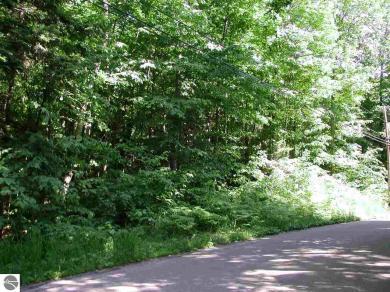 120+ Michigan Trail, Eastport, MI 49627