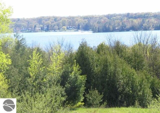 Cedar Ridge, Central Lake, MI 49622
