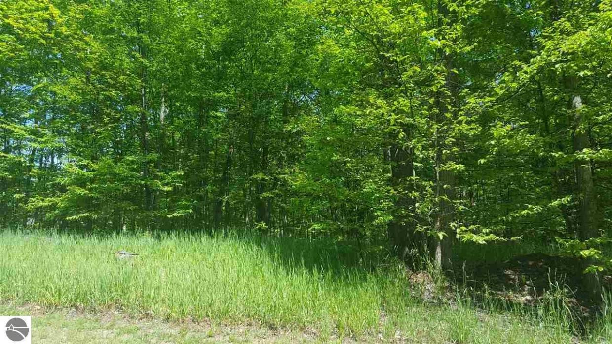 lot 82 Troon North, Bellaire, MI 49615