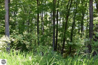 S Bay View Trail, Suttons Bay, MI 49682