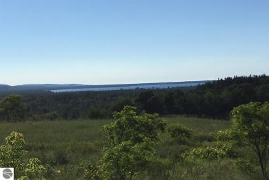 Lot 4 Scenic Circle, Honor, MI 49640