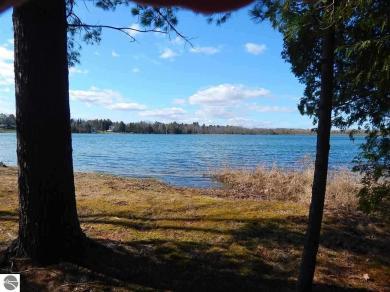 E Cedar Lake Drive, Greenbush, MI 48738