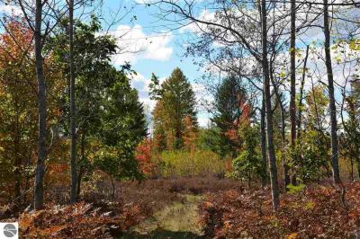Photo of S Garfield Road, Kingsley, MI 49649