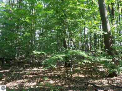 Forest Trail, Bellaire, MI 49615