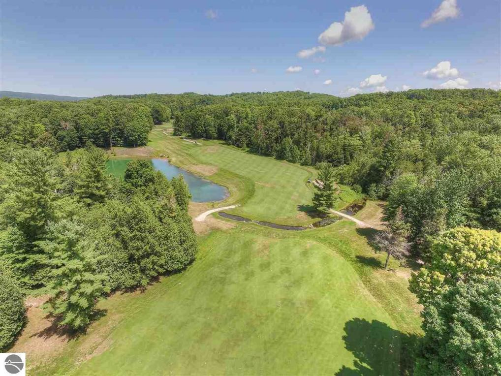 4982 Forest Trail, Bellaire, MI 49615