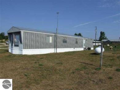 10587 Puffer Road, Fife Lake, MI 49633