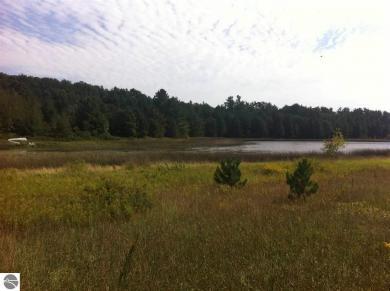 5614 Bartlett Lake Trail, Buckley, MI 49620