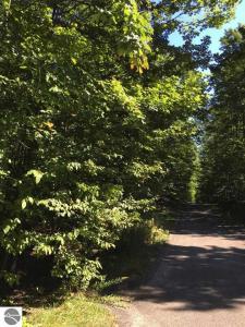 Walkers Way, Bellaire, MI 49615