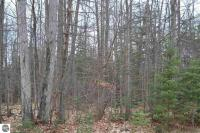 Ottawa Trail, Kewadin, MI 49648