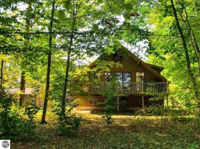 13751 Partridge Trail, Thompsonville, MI 49683