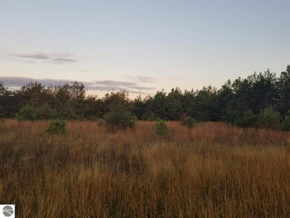 000 Old Pineway Trail, Mesick, MI 49668