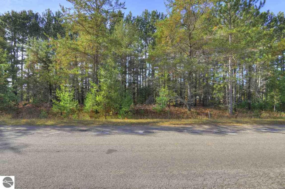 LOT 14 SW Coster Road, Fife Lake, MI 49633