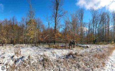 Photo of 00 Townline Road, Kingsley, MI 49649