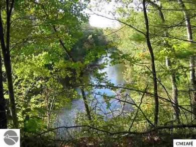 LOT A-1 Rivers Edge Trail, Mt Pleasant, MI 48858