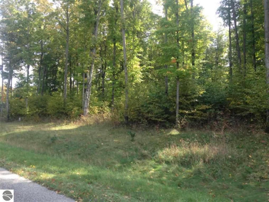 5198 Timber Point Trail, Kingsley, MI 49649