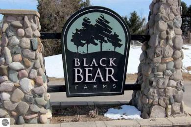 4576 Black Bear Drive, Traverse City, MI 49685