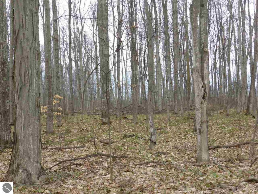 44.03 Acres Fewins Road, Interlochen, MI 49643