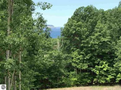 2108 S Ridge Road, Lake Leelanau, MI 49653