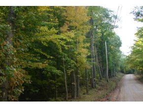 000 Lot 41 Sawtooth, Gilmanton, NH 03237