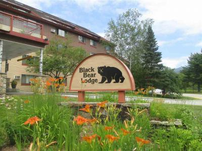 Photo of 509 Black Bear Lodge #509, Waterville Valley, NH 03215