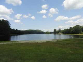 MLS #4757119 - 10 Loon Lake Campground Croydon, NH 03773