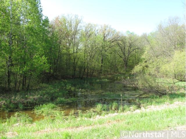 Lot 9 Blk 1 130th Street, Maple Lake, MN 55358